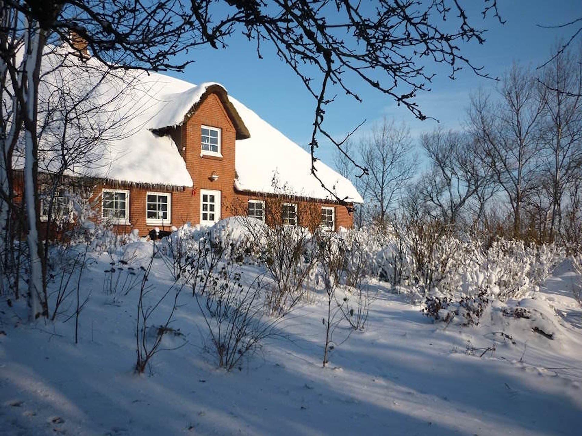reetdachhaus-winter-appartement